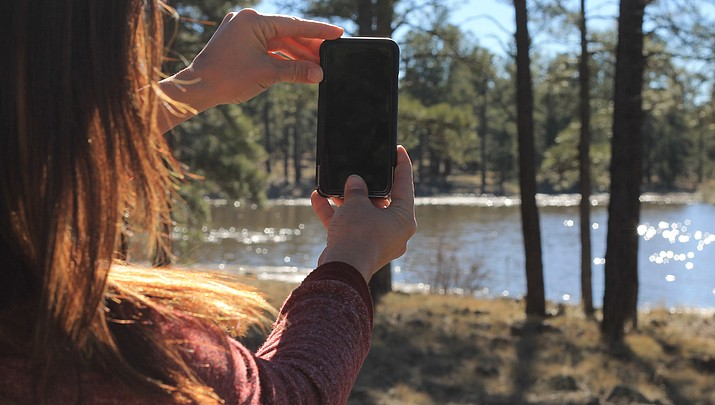 iNaturalist: Social media collides with the natural world