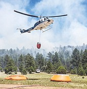 Who started Tenderfoot Fire?  photo