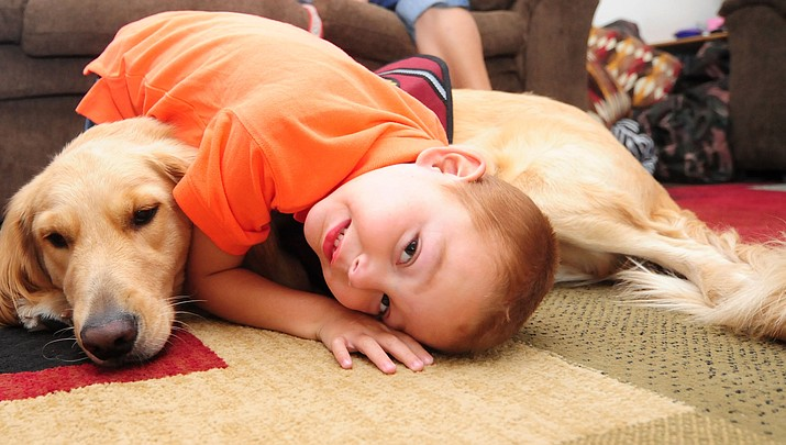 Community's effort brings together boy, service dog