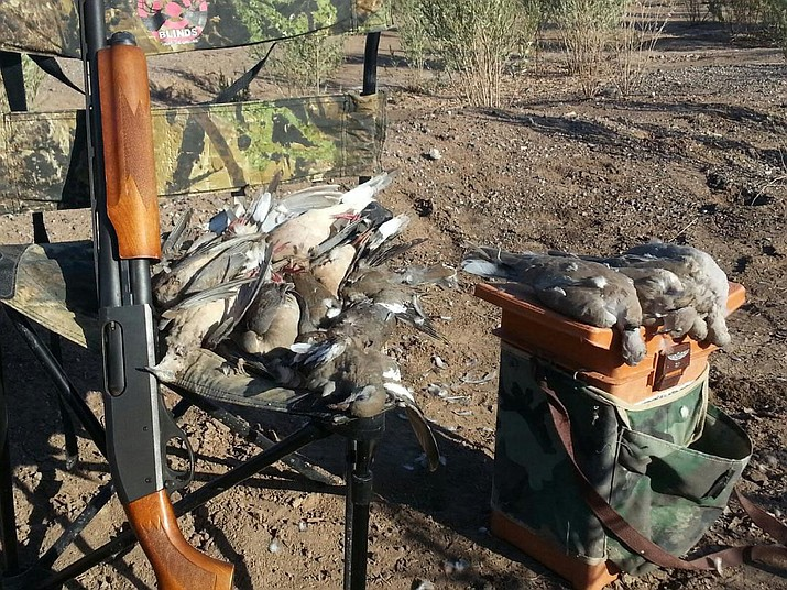 Jim Rich sent in this photo of his limit of doves that he took on opening day of the 2016 dove hunt near Ft. Mohave.