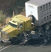 Verde Livestock cattle hauler involved  in Interstate 17 wreck photo