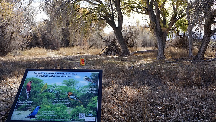 Willow Lake restoration project deals with hiker safety,  fire danger and more