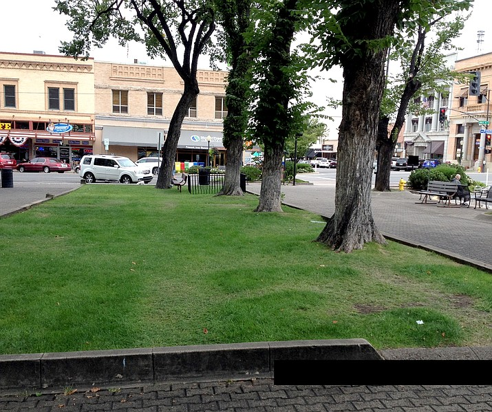 The state of the courthouse lawn has reached the point where the county supervisors want to limit the days available for use.