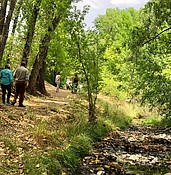 Prescott's Greenways are scenic, but do residents want to use them? photo