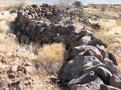 Clifford Hersted believes this wall, 190 meters long, is a pronghorn hunting wall. It is built in the Agua Fria Grassland pronghorn corridor. The wall extends to a canyon edge. Pronghorn have thin fore and rear legs and run along walls and fences, but do not jump them.