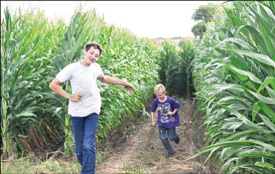 BBN/Heidi Dahms Foster<br /><br /><!-- 1upcrlf2 -->Hayden, left, and Kolten Mortimer finish a run through the Corn Maze at Mortimer Family Farms Saturday. The huge maze has three levels of difficulty, and is scheduled to open for the farm's pumpkin festival on Friday, Oct. 6 from 5-10 p.m.; Saturday from 10 a.m.-5 p.m. and Sunday 10 a.m.-5 p.m. The Corn Maze costs $3 for ages 4-11 and $7 for ages 12 and up. For more information visit www.mortimerfamilyfarms.com.