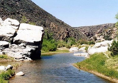 The vitality of the Agua Fria National Monument and its value to surrounding communities depends on the availability of water in the Agua Fria River and its tributaries.