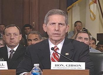 Acting Veterans Affairs Secretary Sloan Gibson