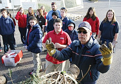 Students from American Heritage Academy in Camp Verde help Camp Verde Kiwanis Club member Dave Kaminsky with the annual Christmas tree delivery. (Photo by Bill Helm)