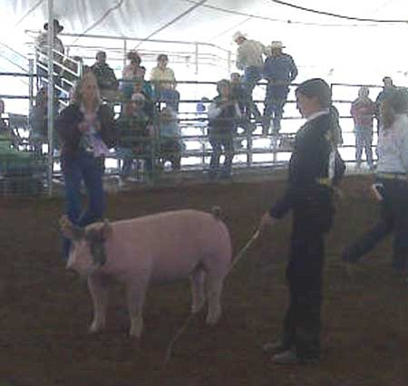 Madalyn Zambrano shows off her pig in the swine category of the 4-H/FFA Expo.