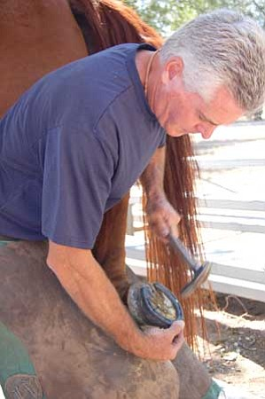 Review/Jerry J. Herrmann<br /><br /><!-- 1upcrlf2 -->Farrier Bob Earle horseshoes one of Greg Sturgis' horses at his business, Four Shoes, Thursday. Earle will do free horseshoeing demonstrations Saturday during First Territorial Capital Days at Yavapai College's Chino Valley campus.