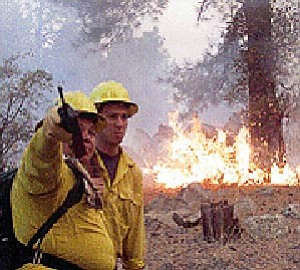 Les Stukenberg/The Daily Courier, file<br> Firefighters work the fireline of the Indian fire south of Prescott May 17, 2002.