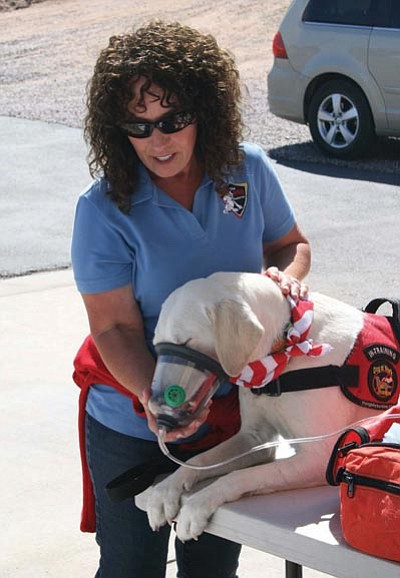 Williamson Valley Fire District/Courtesy photo<br> A Fetch Foundation member demonstrates how a FIDO bag helps save the lives of animals injured during a fire.