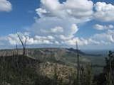 Mogollon Rim, AZ Trail Trailhead
