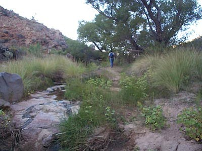 Courtesy photo<br> The Fall Hiking Spree, in which participants are guided in exploring Prescott's trails, begins Saturday and continues for two months.