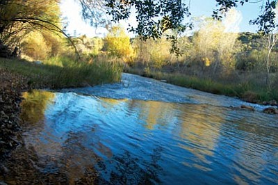 Joanna Dodder/The Daily Courier<br>Fall colors paint the Verde River as it flows through Clarkdale in 2012.
