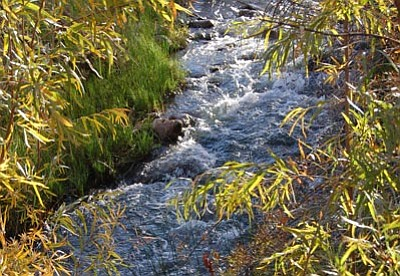 Joanna Dodder/The Daily Courier<br>The Verde River flows near Perkinsville in October 2012.