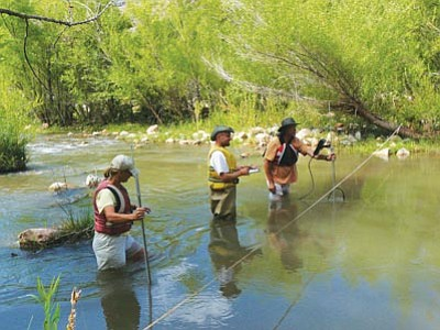 Courtesy photos<br>Sierra Club Water Sentinels volunteers measure the flow and other vitals of the Upper Verde River.