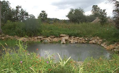 Cindy Barks/The Daily Courier<br> As a part of the recent improvements at the Community Nature Center, the old pond was restored, providing water for wildlife and for the many wildflowers that border it.
