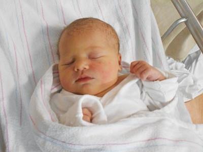 Averie Lauren Jensen