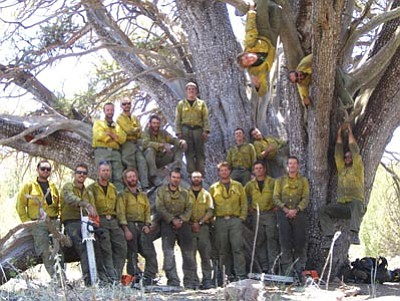 Prescott Fire Department/Courtesy photo<br> The Granite Mountain Hotshots pose under the world record alligator juniper they saved during the Doce Fire, June 19, 2013 on Granite Mountain. The photo was recovered from the personal camera of Granite Mountain Hotshot Christopher MacKenzie after the Yarnell Hill Fire that killed 19 of the 20-man crew on June 30, 2013.