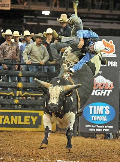 Matt Hinshaw/The Daily Courier<br>Harry Bridges from Julia Creek, Queensland, Australia, flies off the back of Hard Knocks last May 4, 2013, during the Mile High PBR at Tim's Toyota Center in Prescott Valley.