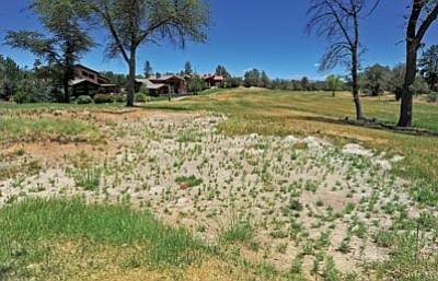 The Hassayampa Golf Club course today, above, is withered from lack of care, but two prospective buyers would like to restore it to its former glory, as seen in the 2006 photo below.