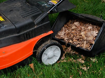 Shred fall leaves with a mower and leave them on the lawn to add organic matter and nutrients to the soil. (Melinda Myers/Courtesy photo)