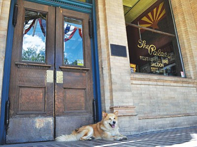 The Palace Restaurant and Saloon is hosting a fundraiser for United Animal Friends from 5 to 8:30 p.m. Thursday, Nov. 13. (Courtesy photo)