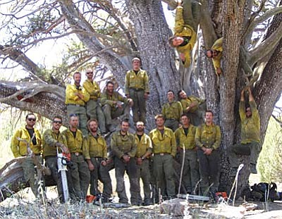 The Granite Mountain Hotshots pose under the world record alligator juniper on June 19, 2013 that the crew saved during the Doce Fire on Granite Mountain. Photo recovered from the personal camera of Granite Mountain Hotshot Christopher MacKenzie following the horrific Yarnell Hill Fire that killed 19 of the Granite Mountain Hotshots on June 30, 2013.