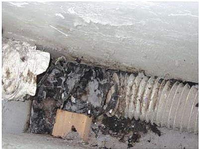 Randy West/Courtesy photo<br>From an inspection last week.