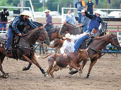 Les Stukenberg/The Daily Courier<br> Trevor Knowles of Mount Vernon, Oregon, was quick enough to place in the average during the final performance of the 2015 Prescott Frontier Days Rodeo Sunday at the Prescott Rodeo Grounds. Knowles did that, and then some, winning the buckle in Steer Wrestling.