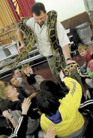 Courier/Hilary Dartt Phil Rakoci, director of Desert Wildlife Presentations, carries a 70-pound, 12.5-foot Burmese python through a group of students at Taylor Hicks School so they get a chance to look at her and touch her. Rakoci made presentations Monday, Tuesday and Wednesday for each grade level at the school.
