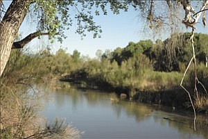 Courtesy photo/Verde Independent The Verde River is No. 10 on American Rivers¹ list of the 10 most endangered U.S. rivers.