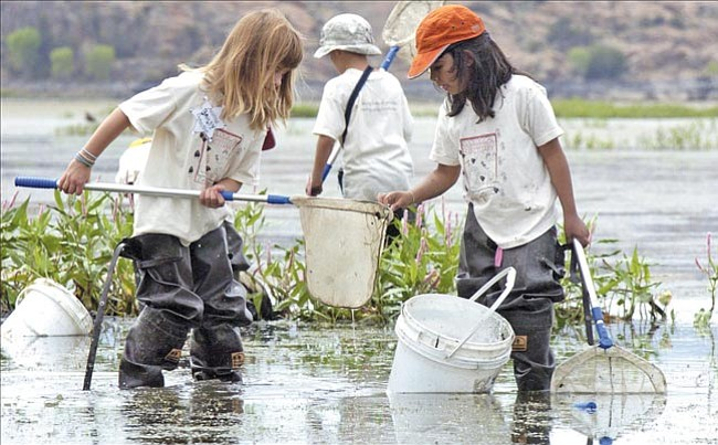 """Bailey Kittel, 7, left, shows Natalie Schulz, 6, a specimen she found in Willow Lake in Prescott Tuesday as children participating in the Heritage Park Zoological Sanctuary's Animal Detective program answer the question, """"How do animals live and survive in different places?"""""""