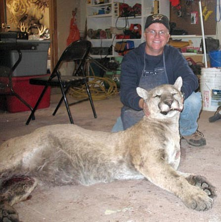 Courtesy<br> Jason Ellico poses with a large mountain lion that Marshall and Barbara Rader's truck hit north of Williams about a month ago. Photos of the lion are popular on hunting blogs and local e-mails lately.