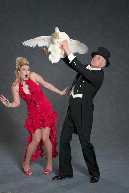 "Courtesy<br> Les Arnold and Dazzle join the all-star lineup for ""It's Magic"" at Yavapai College on March 1."