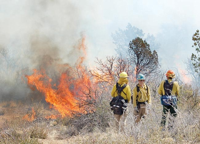 The Daily Courier/Joanna Dodder<p> Chaparral bursts into flames as Arizona Wildfire Academy students learn about wildfire behavior during a prescribed burn in Prescott Thursday.