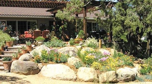Courtesy<br> Perennials, annuals, grasses and native plants offer a beautiful bird sanctuary and gardener's haven.