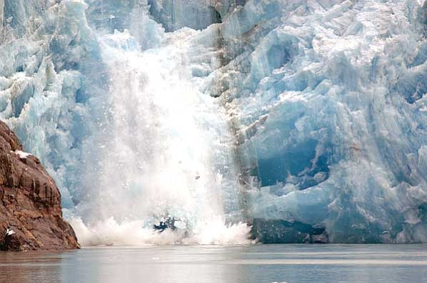 """Holland America Cruiselines/Courtesy photo<br> Listen for the sound of """"white thunder"""" as glaciers calve and monumental chunks of ice split off and crash into the sea. Glacier Bay has more active calving glaciers than anywhere else in the world."""