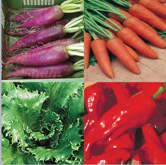 Courtesy photo<p> These are some of the vegetables that people can produce from heirloom seeds.