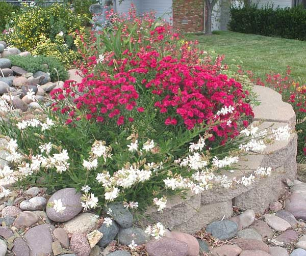 Ken Lain/Courtesy photo<br> Raised flower beds or gardens are easy to make out of blocks or railroad ties.