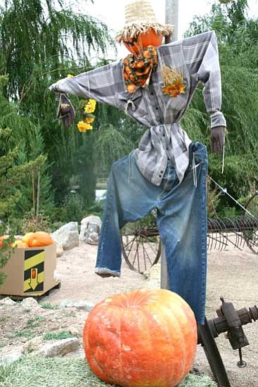 Special to the Courier/<br>Salina Sialega<br> A scarecrow greets visitors at the entrance of this past year's Windmill Farms Pumpkin Festival. The festival is every Saturday and Sunday in October, 9 a.m.-5 p.m. at 1460 W. Road 4 North, turn left off Highway 89 coming from Prescott.