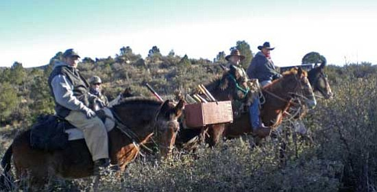 Courtesy photo<br> Clyde Griffith, Wayne Pitrat, Denny Murray and Kelley Schwartz of the Backcountry Horsemen of Central Arizona work on Almosta Trail.
