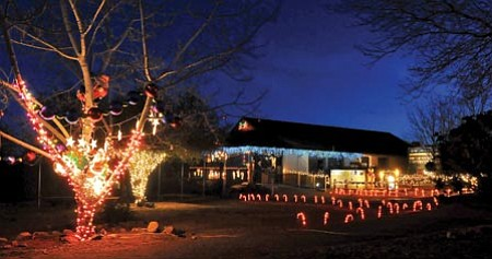 Matt Hinshaw/The Daily Courier<P> Christmas lights illuminate the Heritage Park Zoological Sanctuary Wednesday night in Prescott. The second annual Wild Lights and Animal Sights at the park takes place Friday and Saturday through Jan. 2.