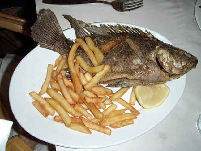 Children pregnant women should avoid eating fish the for Fish to avoid while pregnant