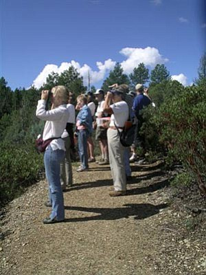 Courtesy/Highlands Center<br />Equipped with their binoculars, birders will be out in force around Prescott throughout April and May during the Highlands Center for Natural History's second annual Birding Spree.<br /><br />