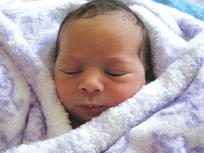 birth: sasha rose lilliokalani hays george | the daily courier