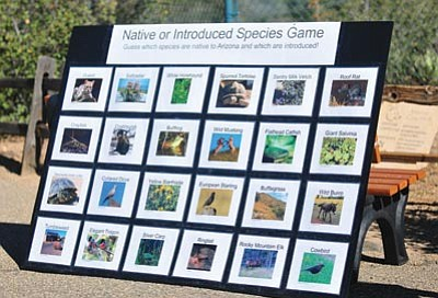 Les Stukenberg/The Daily Courier<br> The Heritage Park Zoological Sanctuary in Prescott has a game you can try while there – you might be surprised at what animals are and are not native to Arizona.