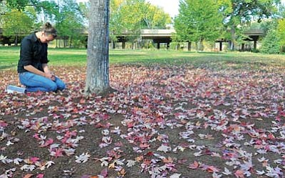 Matt Hinshaw/The Daily Courier<br>Prescott College student Kristin Anthony meditates Tuesday morning next to the tree where a bench she built once stood  in Granite Creek Park. The bench was taken down late Monday night by the City of Prescott.